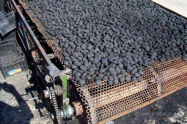 брикеты угля на ленте